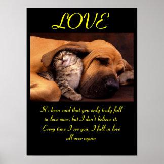 Animal 3 dos posters do AMOR