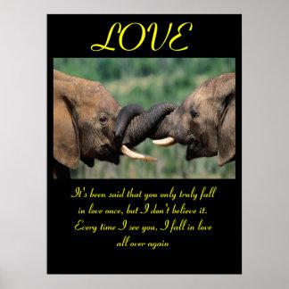 Animal 6 dos posters do AMOR