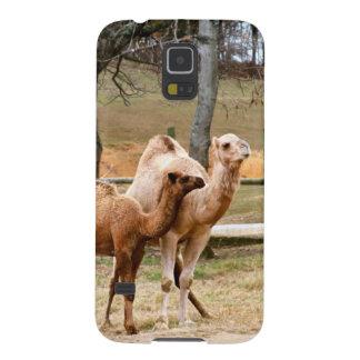 Animal animal do deserto do camelo da mãe e da capinha galaxy s5