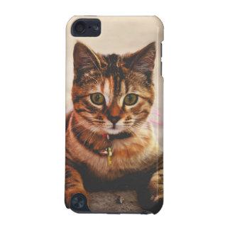 Animal de estimação novo bonito do gatinho do capa para iPod touch 5G
