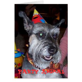 Animal de partido, cartão de aniversário