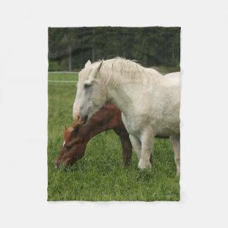 Animal do cavalo branco cobertor de lã