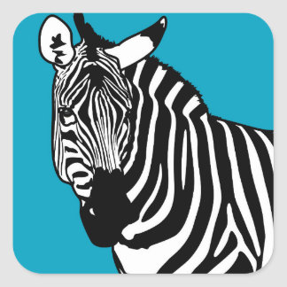 Animal legal da zebra adesivo quadrado