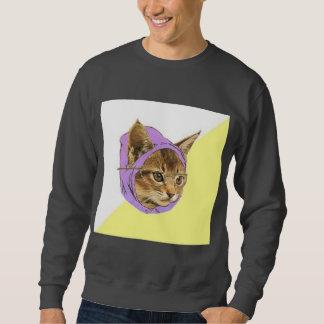 Animal Meme do conselho do gato do gatinho do Moleton