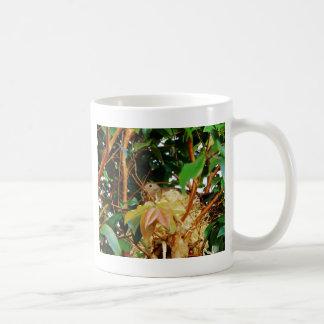 Aninhamento - pássaros de Brasil Caneca