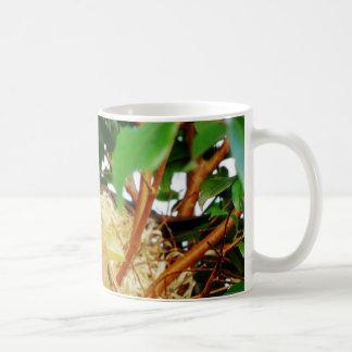 Aninhamento - pássaros de Brasil Caneca De Café