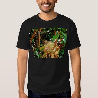 Aninhamento - pássaros de Brasil T-shirts