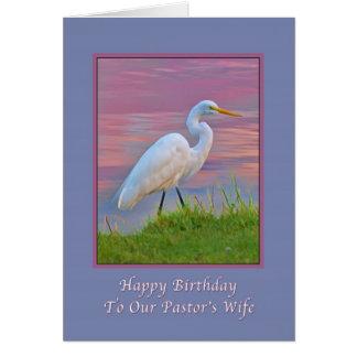 Aniversário, a esposa do pastor, grande Egret que Cartão Comemorativo