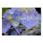 Aniversário azul da escritura do Hydrangea