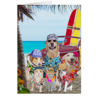 Aniversário cães/do Hawaiian/surfista engraçados Cartão Comemorativo