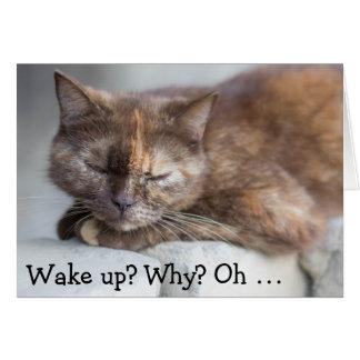 Aniversário Card&Cat: Acorde para um feliz Cartão Comemorativo