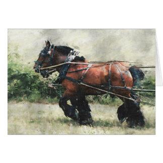 Aniversário da equipe do cavalo de esboço cartão comemorativo