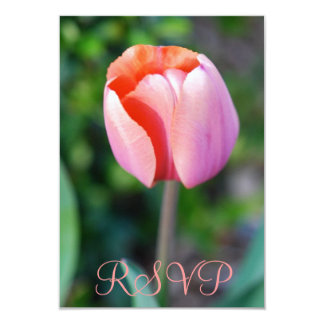 Aniversário da tulipa cor-de-rosa de Quinceanera Convite 8.89 X 12.7cm