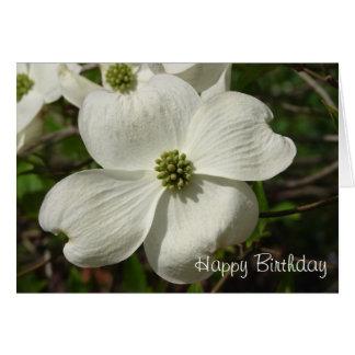 Aniversário do Dogwood Cartão Comemorativo