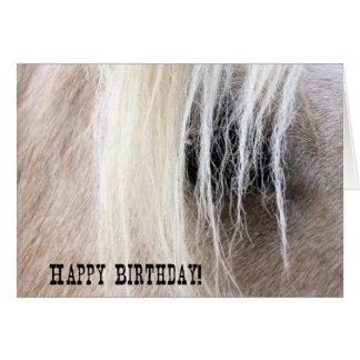 Aniversário do olho do cavalo do Palomino Cartão Comemorativo
