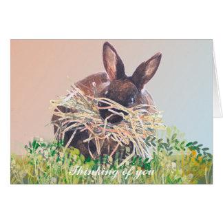 Aniversário dos cartões do coelho de coelho,