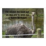 Aniversário engraçado da avestruz