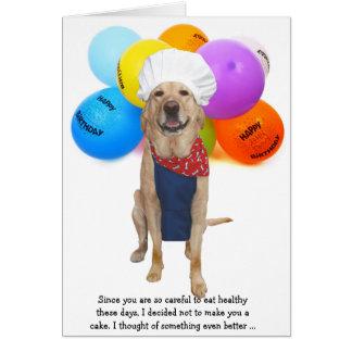 Aniversário engraçado do cão/laboratório do cartão comemorativo