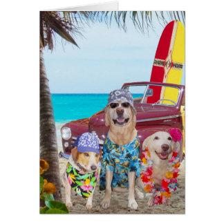 Aniversário engraçado do Hawaiian/surfista dos cãe Cartão
