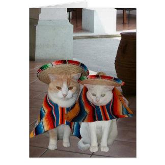 Aniversário espanhol do gato engraçado para o cartão comemorativo