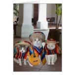 Aniversário espanhol dos gatos engraçados para qua cartões