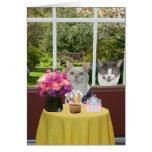 Aniversário fêmea de Photobomb do gato bonito Cartão Comemorativo
