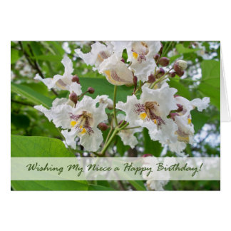 Aniversário para a sobrinha, flores de Catalpa Cartão Comemorativo
