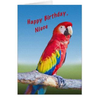 Aniversário, sobrinha, papagaio do Macaw Cartoes
