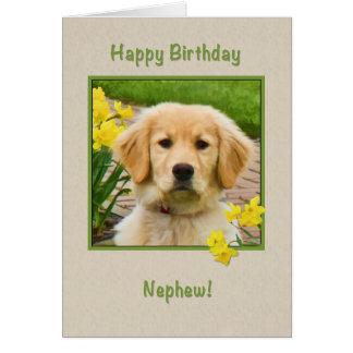 Aniversário, sobrinho, cão do golden retriever, cartão comemorativo