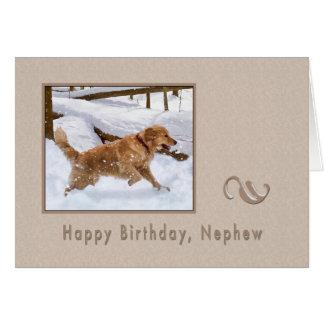 Aniversário, sobrinho, cão do golden retriever na  cartao
