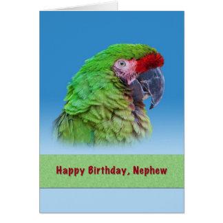 Aniversário, sobrinho, papagaio verde cartao