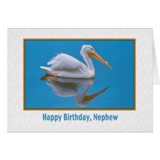 Aniversário, sobrinho, pelicano branco cartão
