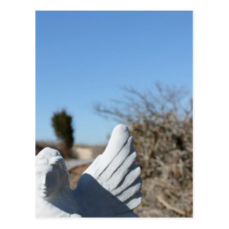 Anjo da praia cartão postal