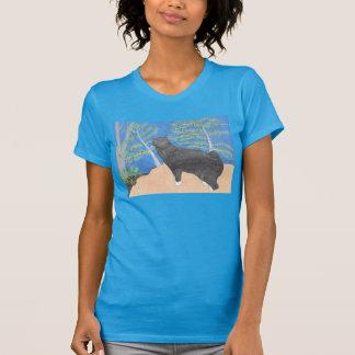 Annie o gato que olha sobre a camisa do montanhês