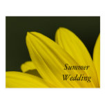 Anúncio amarelo do casamento do verão da pétala do cartoes postais