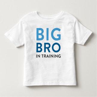 Anúncio da camisa do big brother, camisa do big