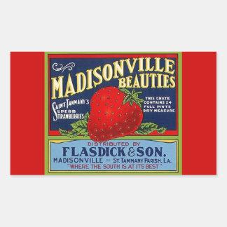 Anúncio da morango do LA de Madisonville do vintag Adesivos