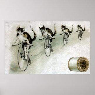 Anúncio do vintage - gatos em bicicletas impressão