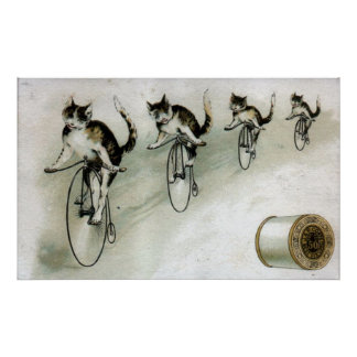 Anúncio do vintage - gatos em bicicletas pôster