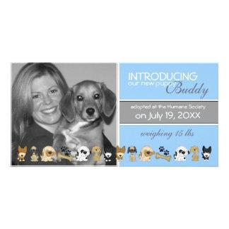 Anúncio novo da adopção do cão cartão com foto