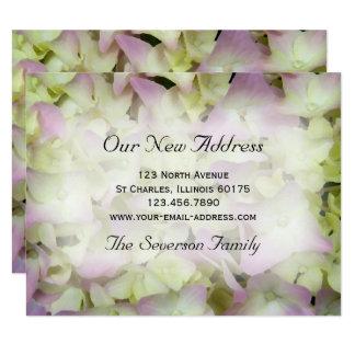Anúncio novo do endereço do Hydrangea quase