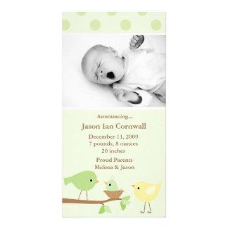 Anúncio verde do nascimento dos pássaros cartoes com fotos personalizados