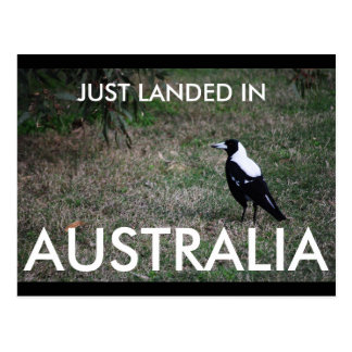 Apenas aterrado no cartão de Austrália