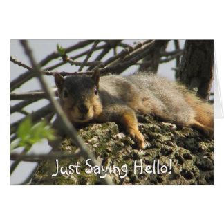 Apenas dizendo o esquilo bonito do olá! no cartão