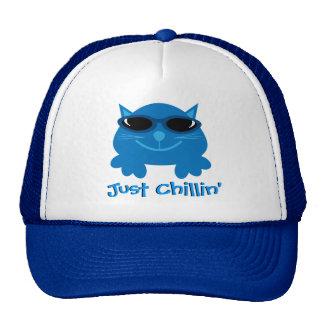 Apenas gato azul de Chillin com óculos de sol Bones