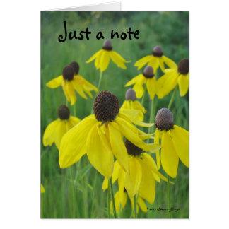 Apenas um cartão de nota/Coneflowers amarelo