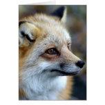 Apenas um Fox pequeno bonito Cartão