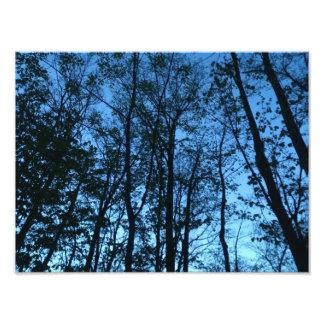 Após o por do sol impressão de foto
