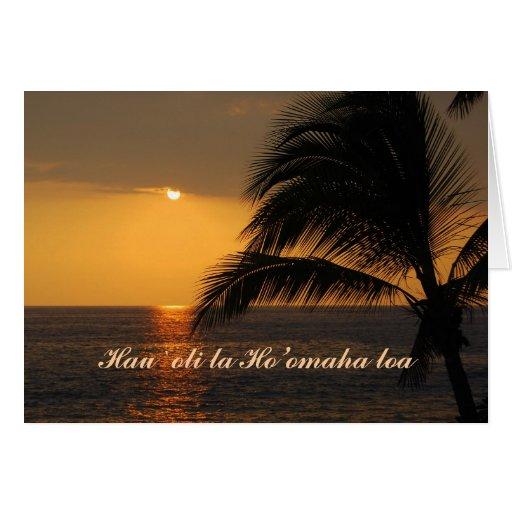 Aposentadoria feliz, Hawaiian, por do sol tropical Cartoes