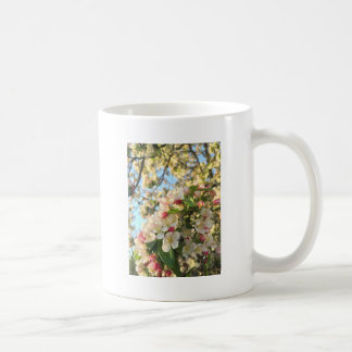 Apple floresce luz do sol caneca de café